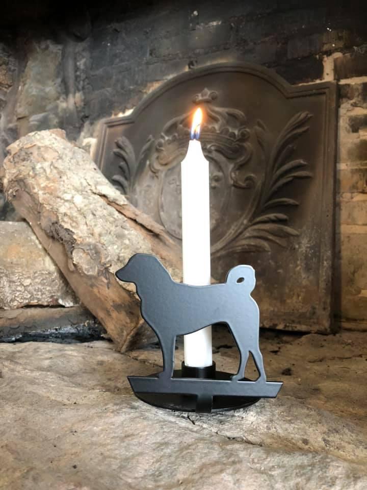 Kammer stage Appenzeller sennenhund