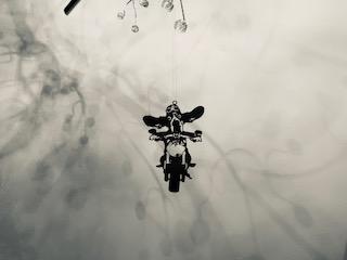 Basset på motorcykel